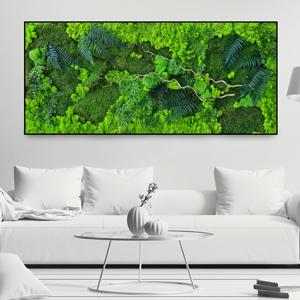Immagine Quadri Moss prodotti
